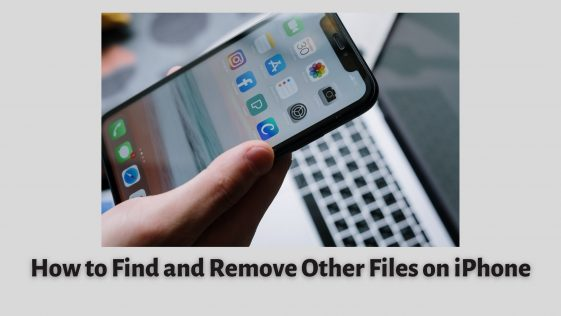 How to Find and Remove Other Files on iPhone