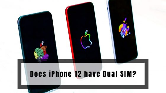 Does iPhone 12 have Dual SIM